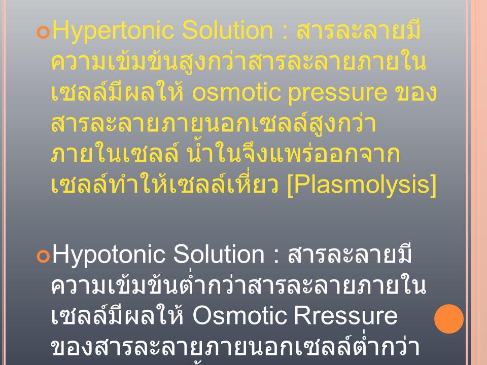 Hypertonic Solution : สารละลายมี ความเข้มข้นสูงกว่าสารละลายภายใน เซลล์มีผลให้ osmotic pressure ของสารละลายภายนอกเซลล์สูงกว่า ภายในเซลล์ น้ำในจึงแพร่ออกจาก เซลล์ทำให้เซลล์เหี่ยว [Plasmolysis]